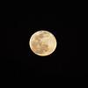 1919342021-02-27 Full Moon held at Home,  Arizona on 2/27/2021.