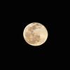 1924292021-02-27 Full Moon held at Home,  Arizona on 2/27/2021.