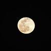 1923312021-02-27 Full Moon held at Home,  Arizona on 2/27/2021.