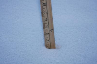 02.25.2010 Snowstorm