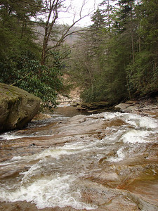 Red Creek - the water's been running for awhile here.