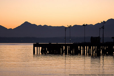 Images from a Wednesday evening visit to the Off Leash Area Edmonds beach www.olae.org on the Edmonds Waterfront. Images includes dogs playing and suunset over the Puget Sound and Olympic Mountains. Images were cropped and then batched processed for display on the web. All files are Copyright © 2006 J. Andrew Towell All uses are prohibited without the express prior written permission of the copyright holder - who can be reached at troutstreaming@gmail.com.