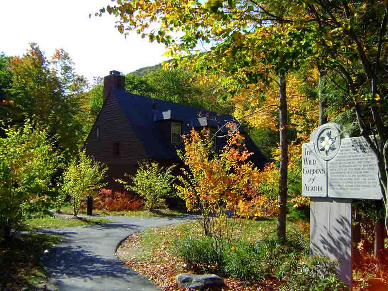 THE NATURE CENTER<br /> <br /> I've been here at Sieur de Monts when the leaves were turning before, but this place is absolutely on fire. Very nice!