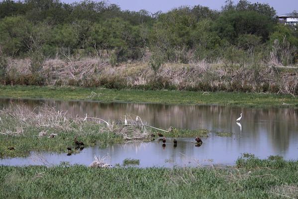 09-07-25 Mitchell Lake in San Antonio