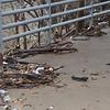 Debris on bridge left by Rowlett Creek overflow
