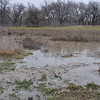 Boy scout pond - about 4-feet deep and totally bone dry the day before