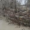 South Gambion wall downstream of bridge - lots more debris