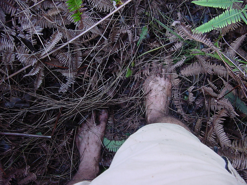 oh yeah, the soles fell off my shoes at the start of the hike, so i did it barefoot . . .some parts were a little pokie
