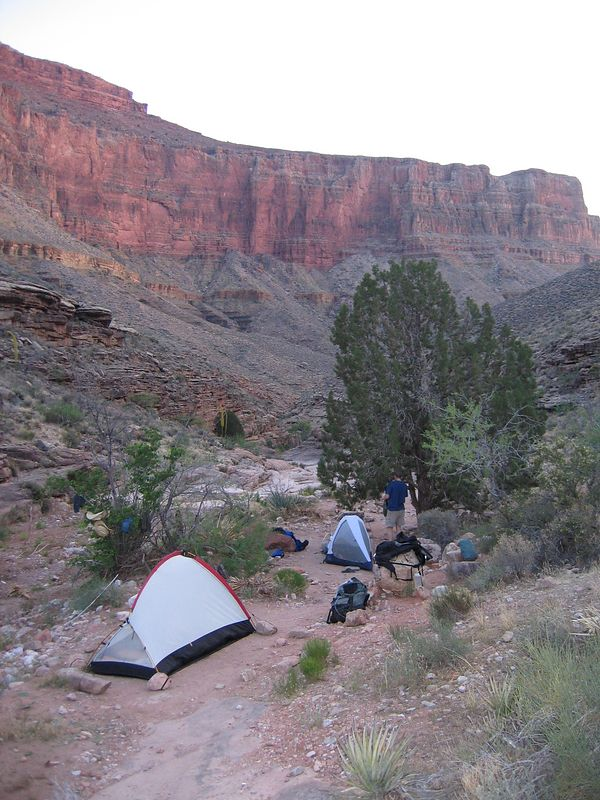 Campsite at Grapevine, looking down-wash