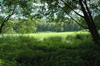 2004.05.23-Deer.Lake
