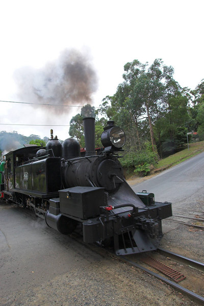 Puffing Billy departs. The steep hill to the right represents the start of our walk to Grant's Picnic Ground.