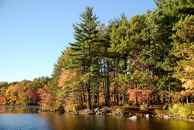 2007.10 fall foliage