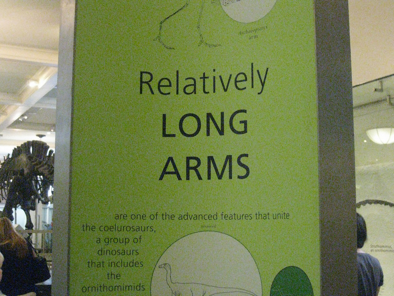 as opposed to, say, tiny arms?  ;)