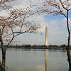 March 29, 2009<br /> We started close to the Jefferson Memorial.  The old sidewalk is submerged at high tide.  You can still see it under the water.
