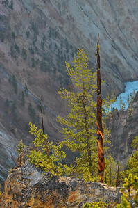 Yellowstone Canyon