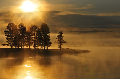 Hayden Valley, Yellowstone River.  The photo was taken near Alum Creek.  I took many photos as the sun rose and the fog came and went.