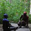 Red state...Blue state debate
