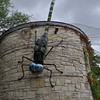 Everything's bigger in Texas - even the Dragon Fly!