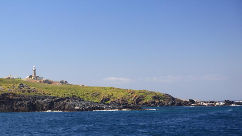 This photo was taken as we approached Montague Island and a concentration of seals from the North West.
