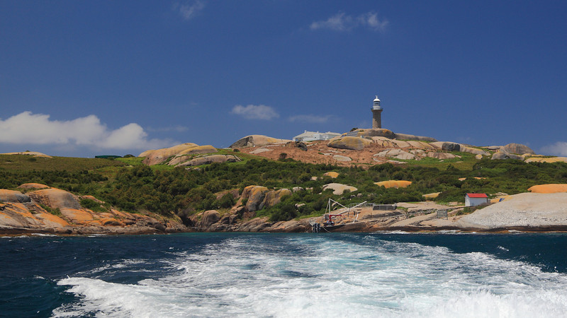 ... and so we say goodbye to Montague Island, jewel of the Saphire Coast.