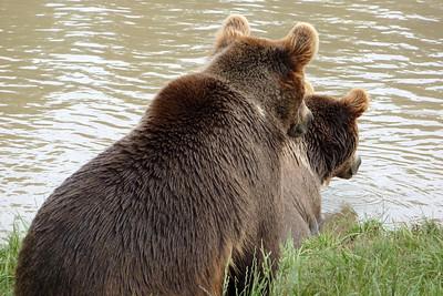 Wildlife Safari Winston Oregon