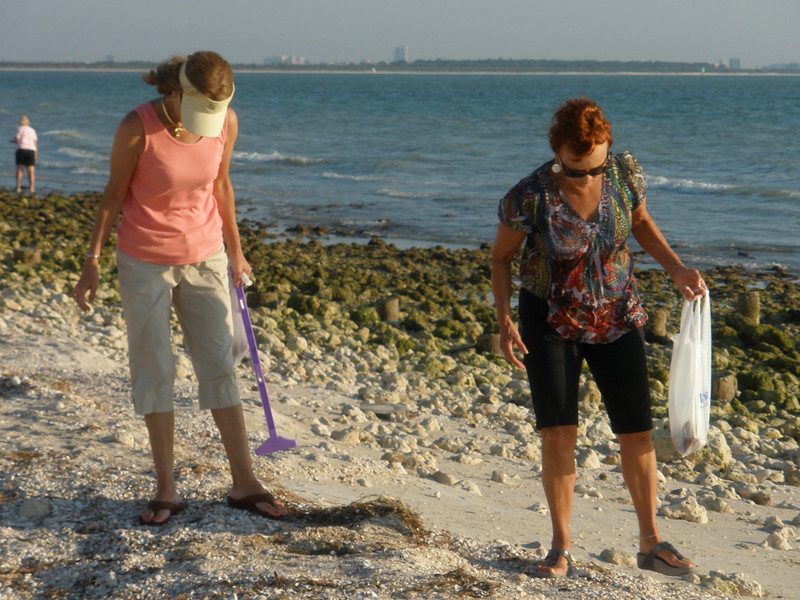 Charlotte Sarafolean and Vadis searching for shells on Honeymoon Island