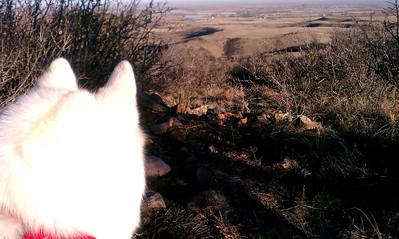 2011-1127-Rabbit Mountain Hike