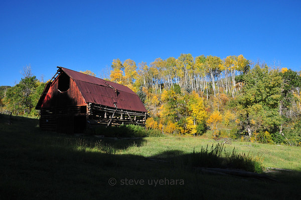 An abandoned barn alongside the road going up to the Hell Roaring trail.