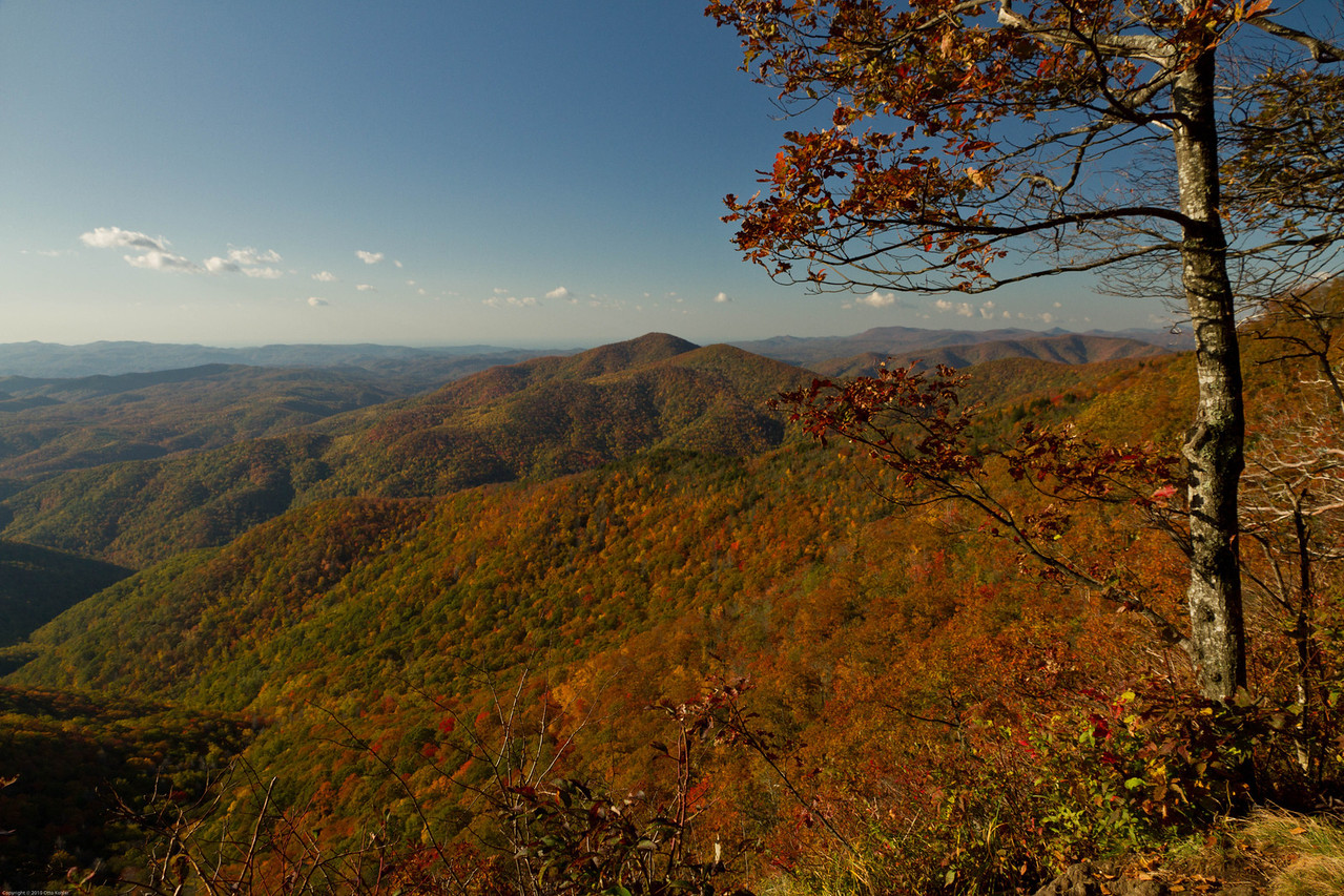 Along the Blue Ridge Parkway, NC