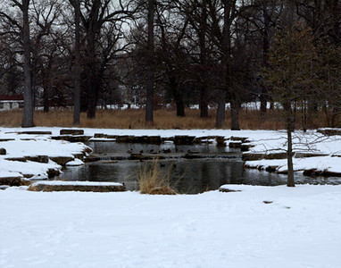 Pond in snow, February 6, Forest Park