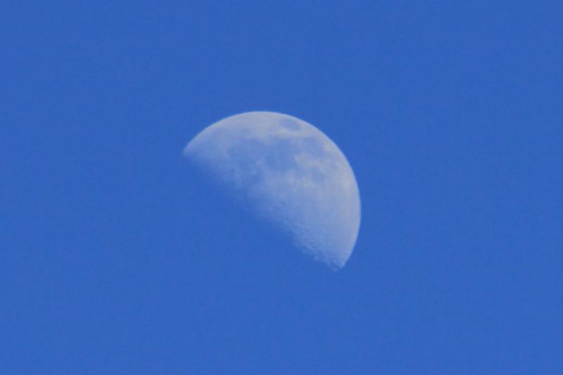 Moon 2-11-11