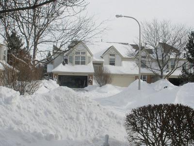 February 2, 2011 by Nikki Plaza-Altman 6