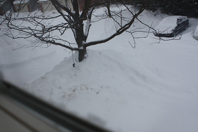 20110201 Blizzard of 2011 002