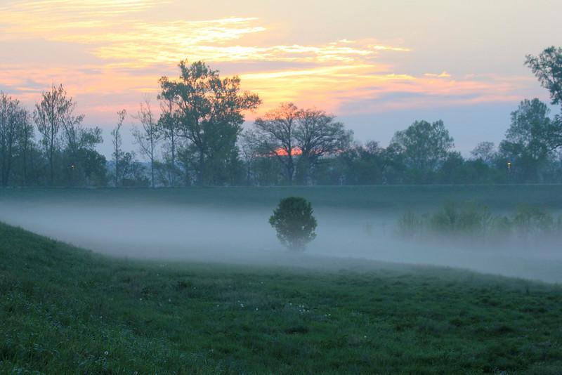 April 1, 2012 (Simpson Lake County Park [unfenced water treatment marsh] / Valley Park, Saint Louis County, Missouri) -- Sunrise