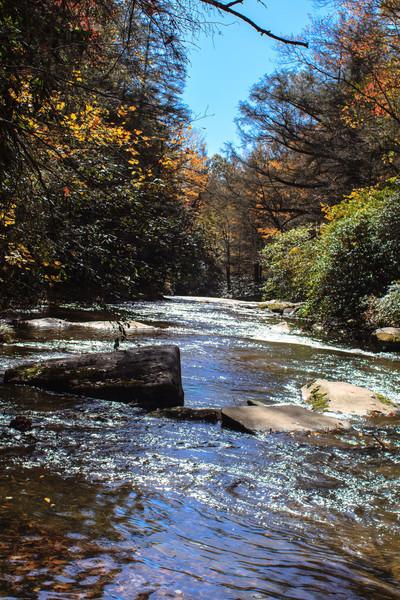 Below Schoolhouse Falls, NC