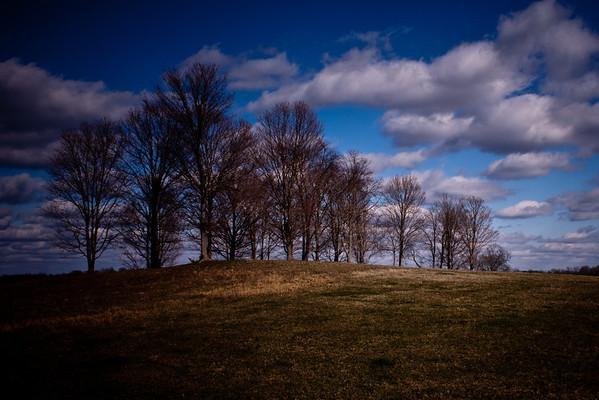 02-11-2012 Cold Field