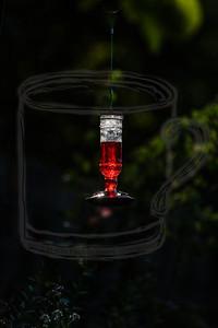 refilled feeder w spot metering