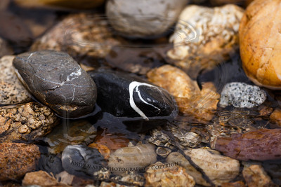 Easy auto-focus on the killer-whale stone in the (for now) wet Dry Creek.