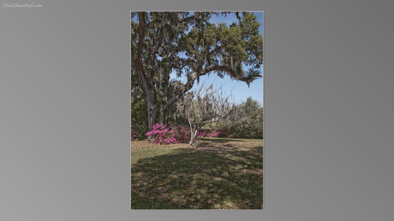 2012_03_29-5 (Brookgreen Gardens)-021