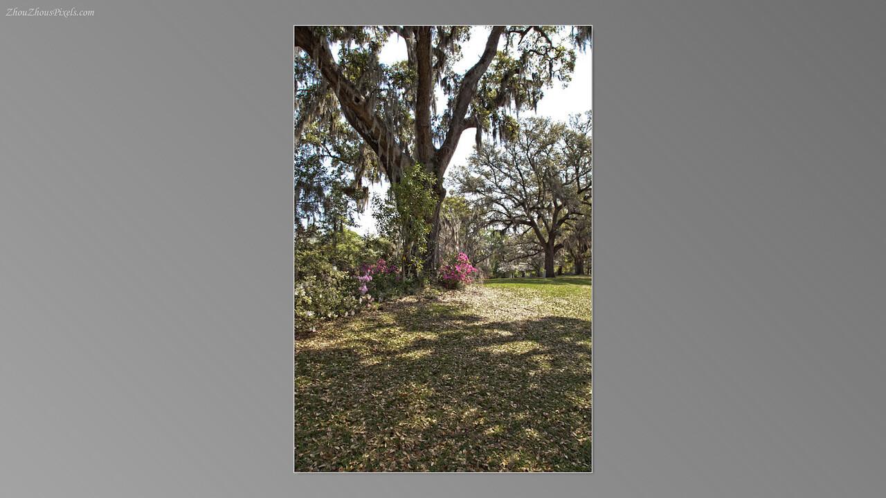 2012_03_29-5 (Brookgreen Gardens)-020