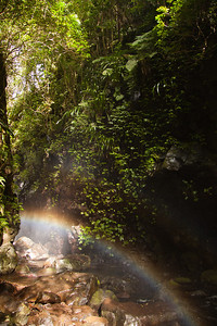 ohh a rainbow in the spray of a water fall