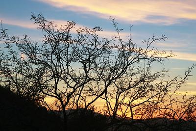 Tucson-20121211-054