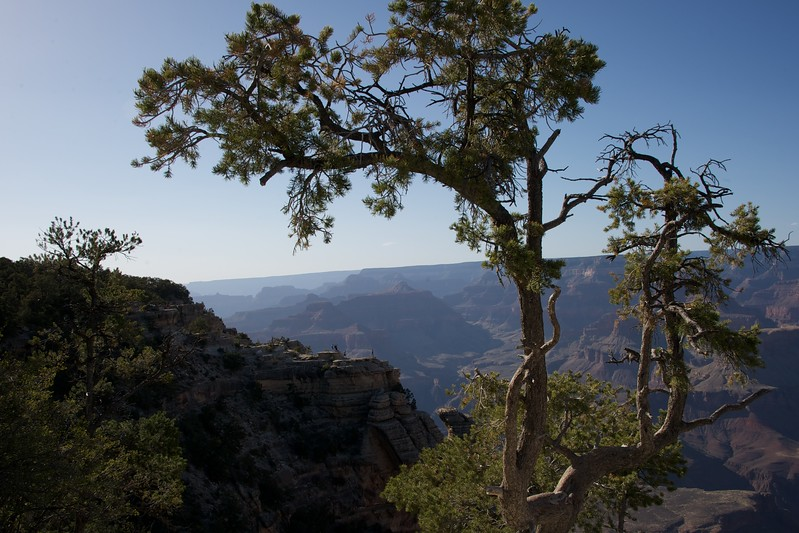 2014-05-21 Grand Canyon 50