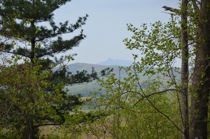 Pilot Mountain, NC from DeHart Botanical Garden