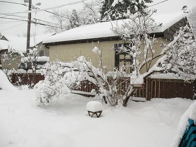 2015-02-01 February Snowstorm