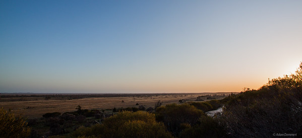 Sunrise from atop Snow Drift sand dune,  Wyperfeld np