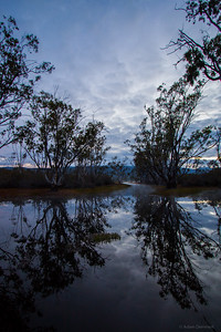 An early moody morning at Moora Moora Reservoir