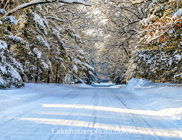 January - Snow Falling