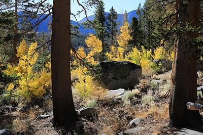 Eastern Sierras 2016  203