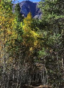 Eastern Sierras 2016  746